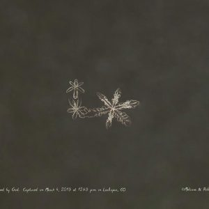 Angel Snowflake